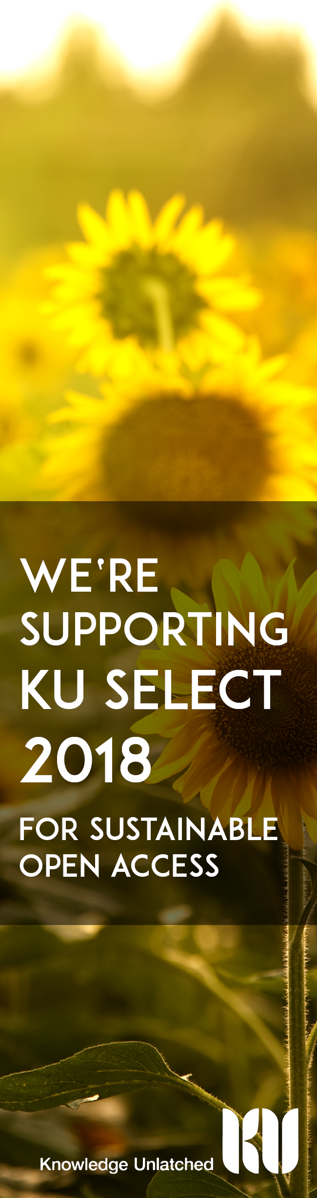 KU Support 2018 skyscraper