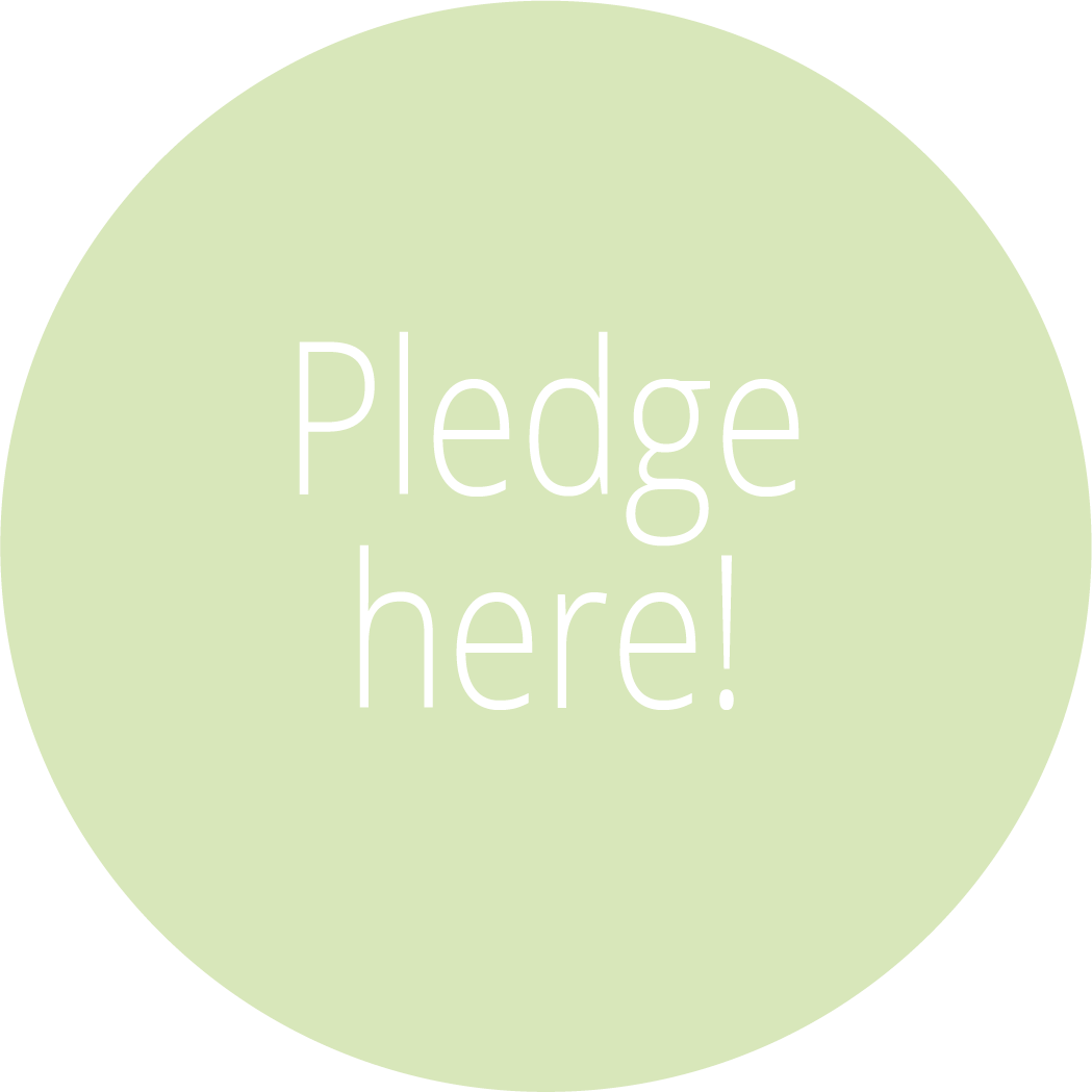 Pledge here History