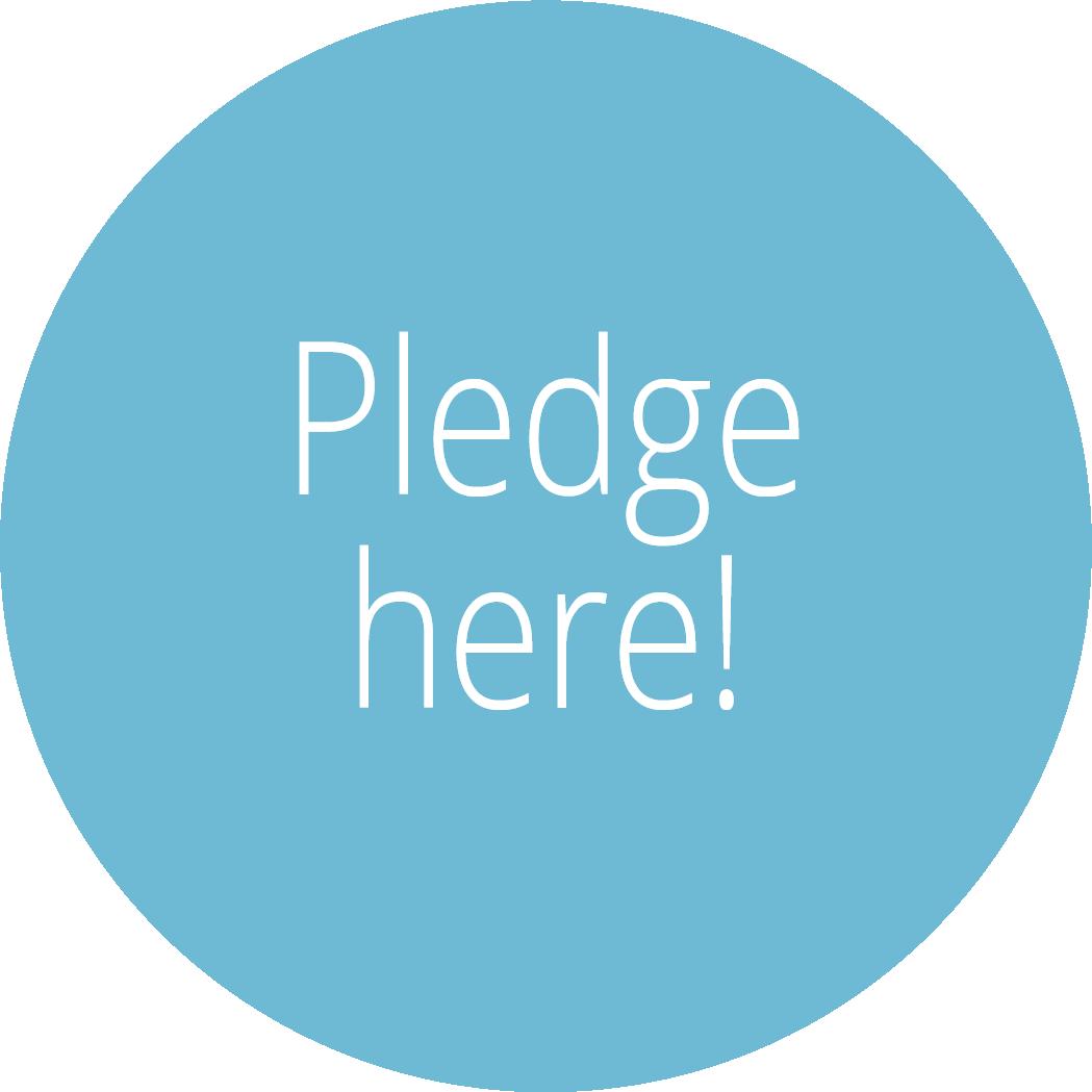 Pledge here Politics