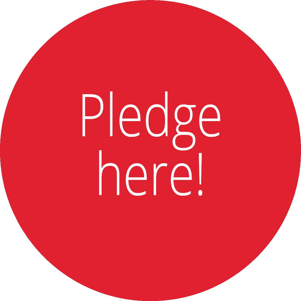 Pledge here STEM